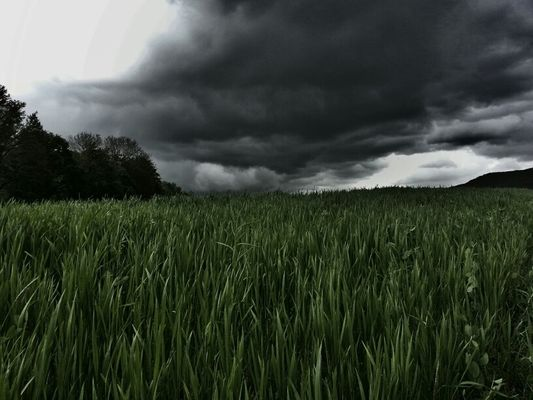 Weather in Schwäbisch Gmünd by Alex Narco