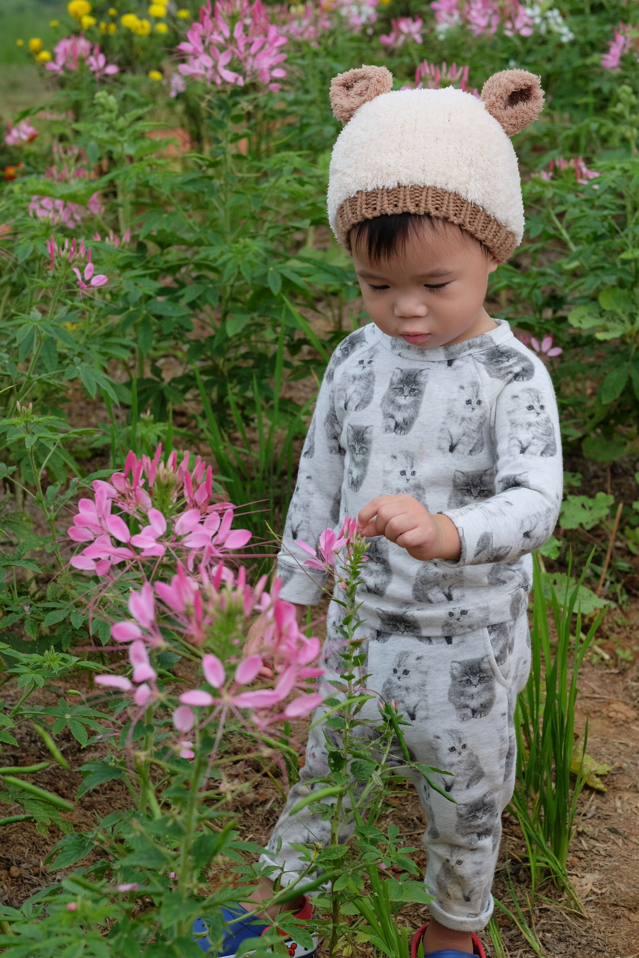 Childhood Cute Day Flower Flower Head Fragility Freshness Front View Full Length Grass Growth Innocence Lifestyles Nature One Person Outdoors Plant Real People Standing