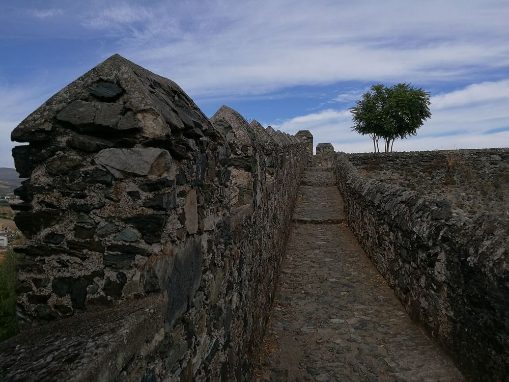 Sky The Way Forward Tree Built Structure Old Ruin The Past Architecture Cloud - Sky History Footpath Outdoors Travel Destinations Steps Entrance Archeology Ancient Stone Material Surrounding Wall Day Ancient Civilization