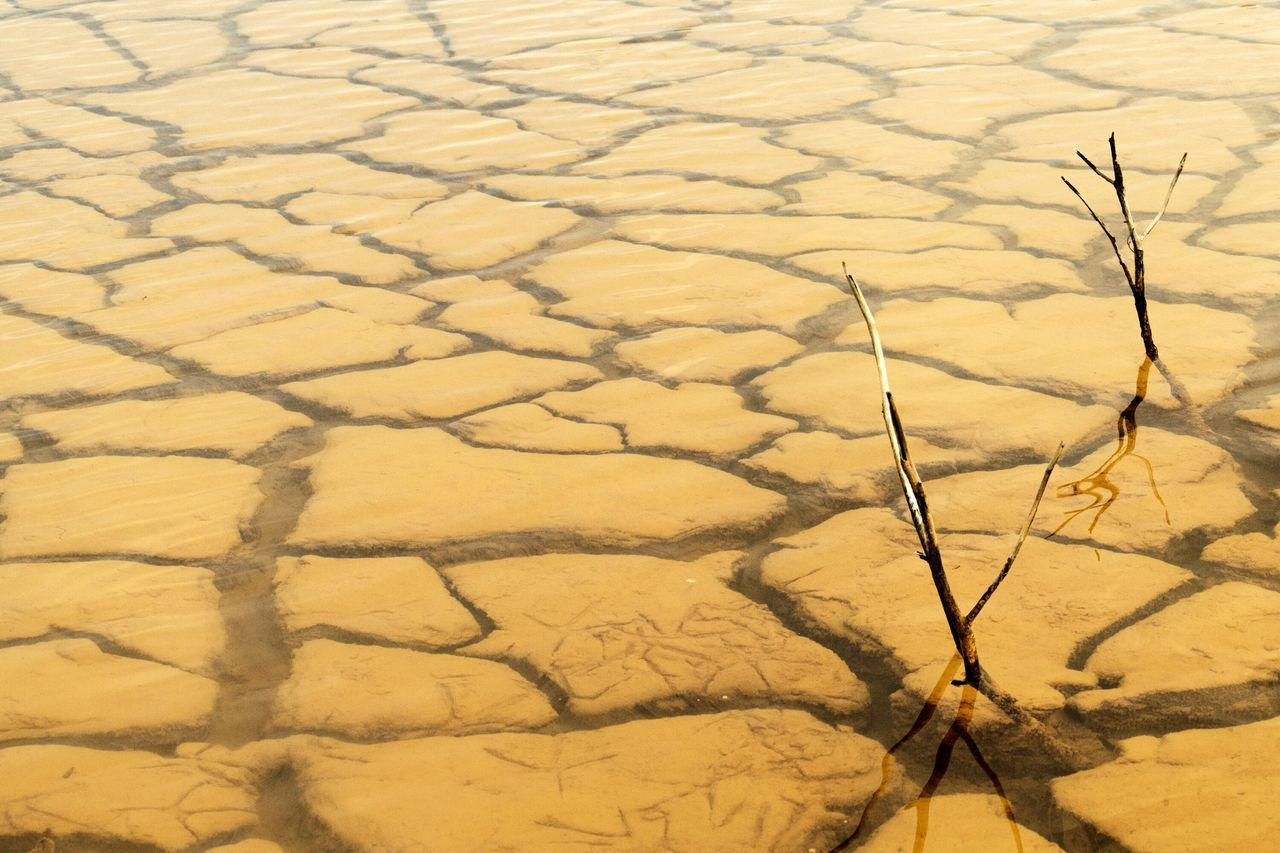 cracked, full frame, landscape, drought, pattern, nature, no people, backgrounds, outdoors, arid climate, day, beauty in nature