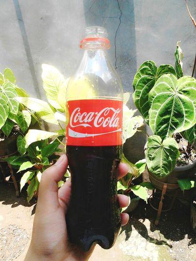 Liquid Lunch Showcase: February Cola CarbonatedDrink
