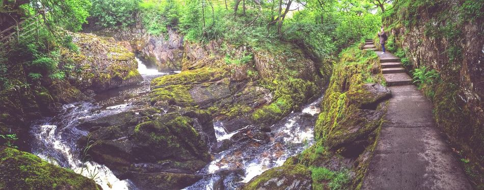 Waterfalls Nature Tranquility Beauty In Nature The Way Forward Green Color Tranquil Scene Outdoors Tree Day Scenics Water Waterfalls Waterfall First Eyeem Photo