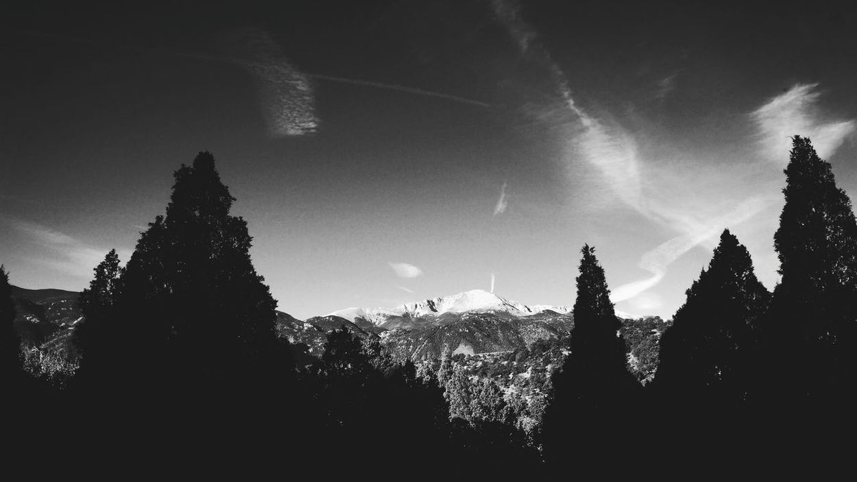 I love black and white pictures. Countryside Nature Tadaa Community Colorado Beautiful Nature Nature Photography Naturelovers Nature_collection Trees Collection Tree How Do We Build The World? Blackandwhite Mountains Gardenofthegods Beautiful Moretocome Photography Photographer