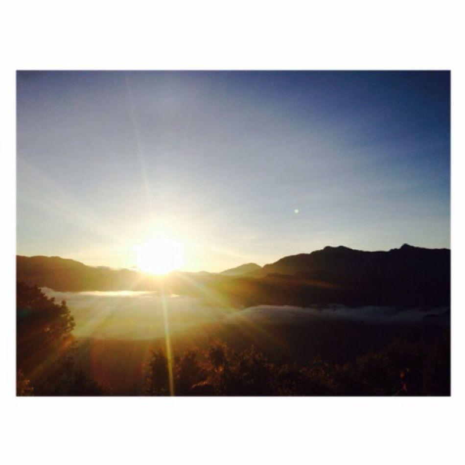 酸甜苦辣自己嚐, 喜怒哀樂自己扛; 我是自己的太陽, 無須憑借誰的光。