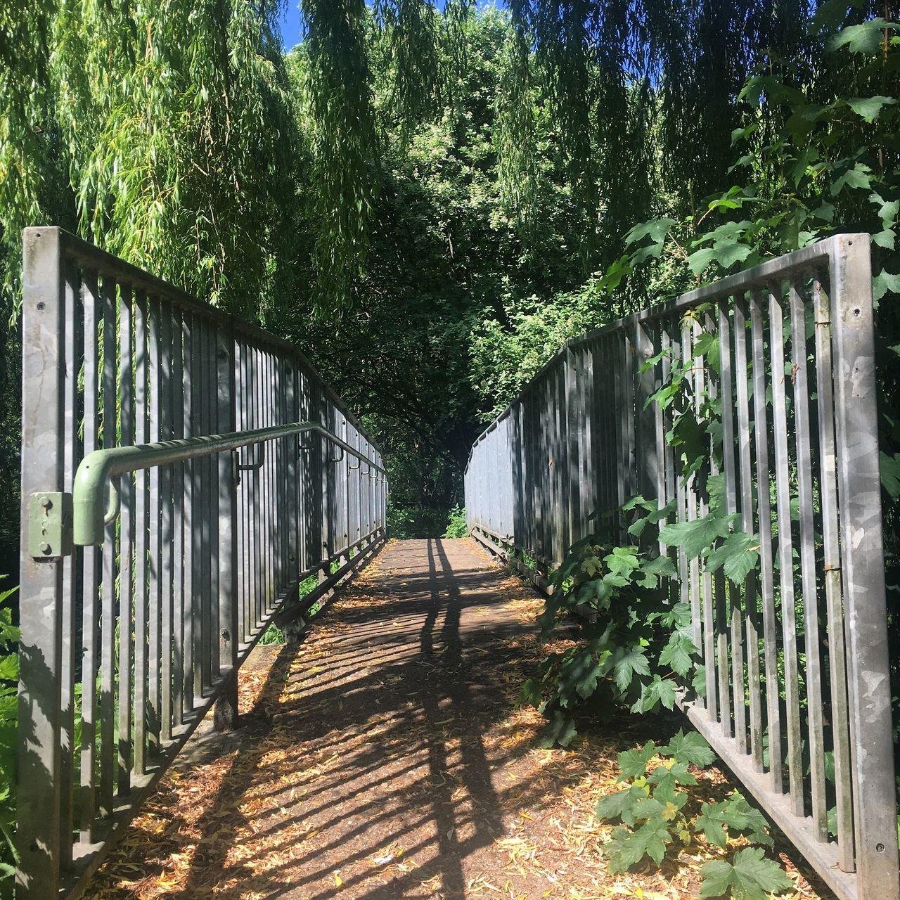 The Great Outdoors Beauty In Nature Nature Bridge Railing Tree Footbridge May Sunshine