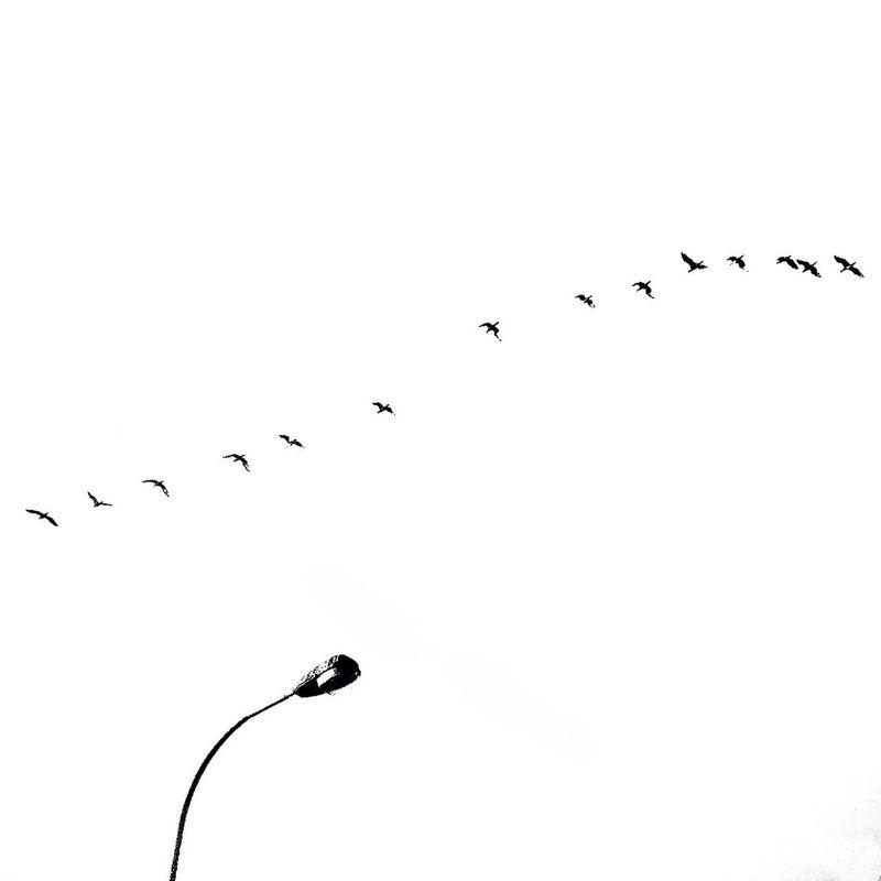 simplicity by Ria Molde