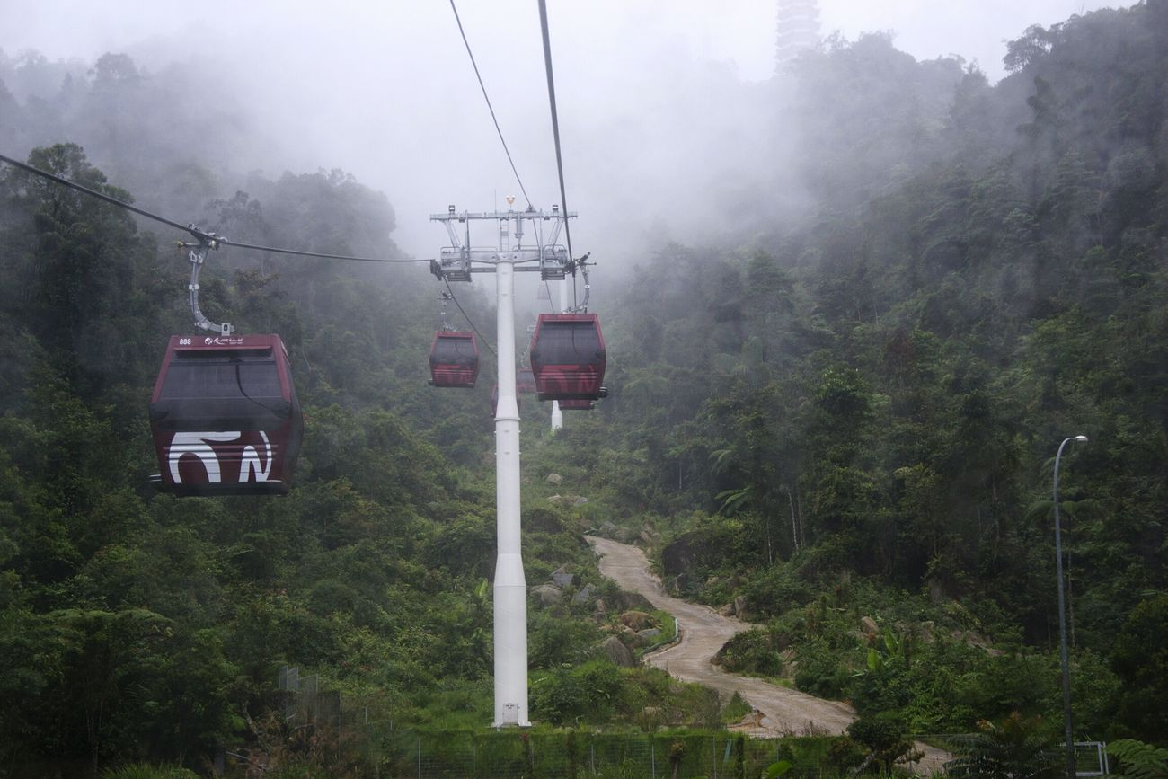 Fog Tree Rain Nature Weather Morning Beauty In Nature Outdoors Overhead Cable Car Landscape Cable Car Cable Cars Skyway Storm