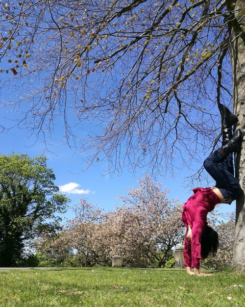 Life is beautiful when it's upside down. Tree Growth Nature Day Outdoors Blue Grass Beauty In Nature Sky Flower Branch Freshness Yoga Yogapose Yogaeverywhere Handstand  Yogagirl Yogalove Yogainspiration