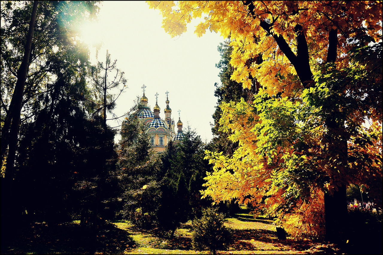 Afternoon Light Afternoon Sun Architecture Autumn Autumn Collection Autumn Colors Autumn Park Autumn Sun Church Fall Beauty Fall Colors Low Angle View Orthodox Church Panfilov Park Panfilovpark Sun Light Sun Through The Trees Trees And Bushes