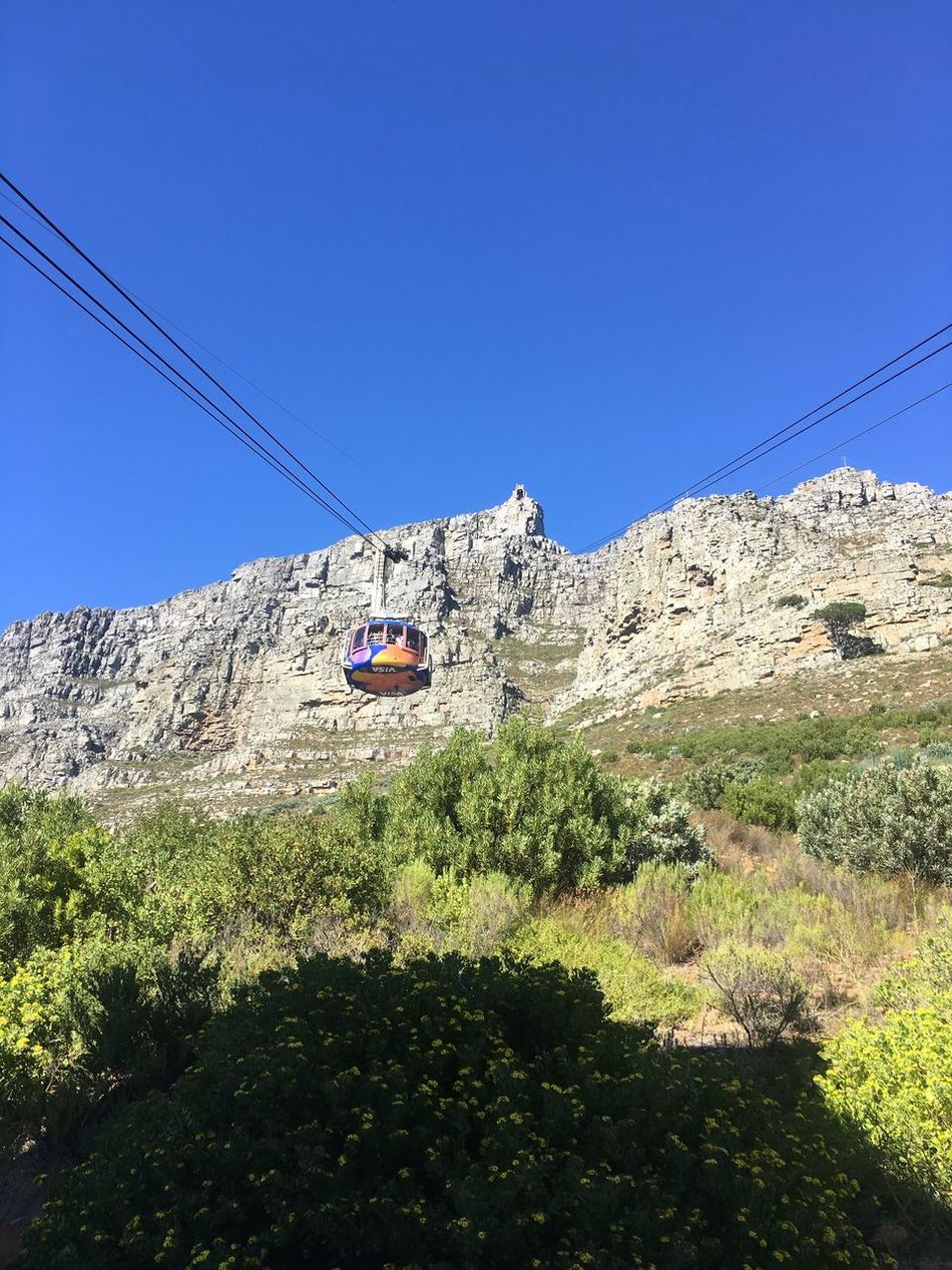 Mountain Nature Rock - Object Adventure Clear Sky Blue Day Beauty In Nature Cliff Cable Outdoors Overhead Cable Car Sunlight Low Angle View Tree Scenics Mountain Range No People Ski Lift Sky Capetown Table Mountain Cable Car Cables