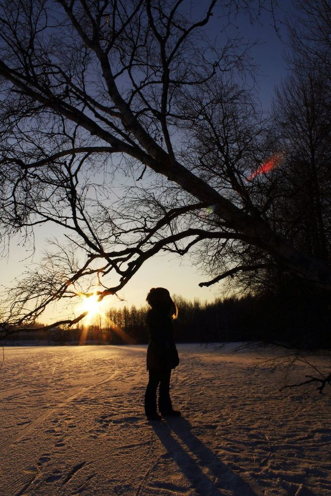 Winter Winter Sun Silhouette Winter Day Coldweather Coldday Freezingweather Finland