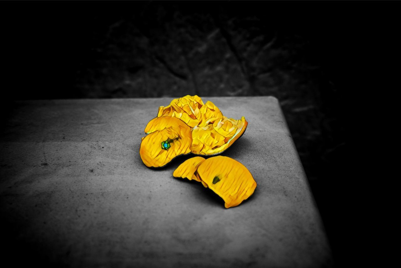 yellow, no people, close-up, flower, black background, freshness, indoors, fragility, flower head, day