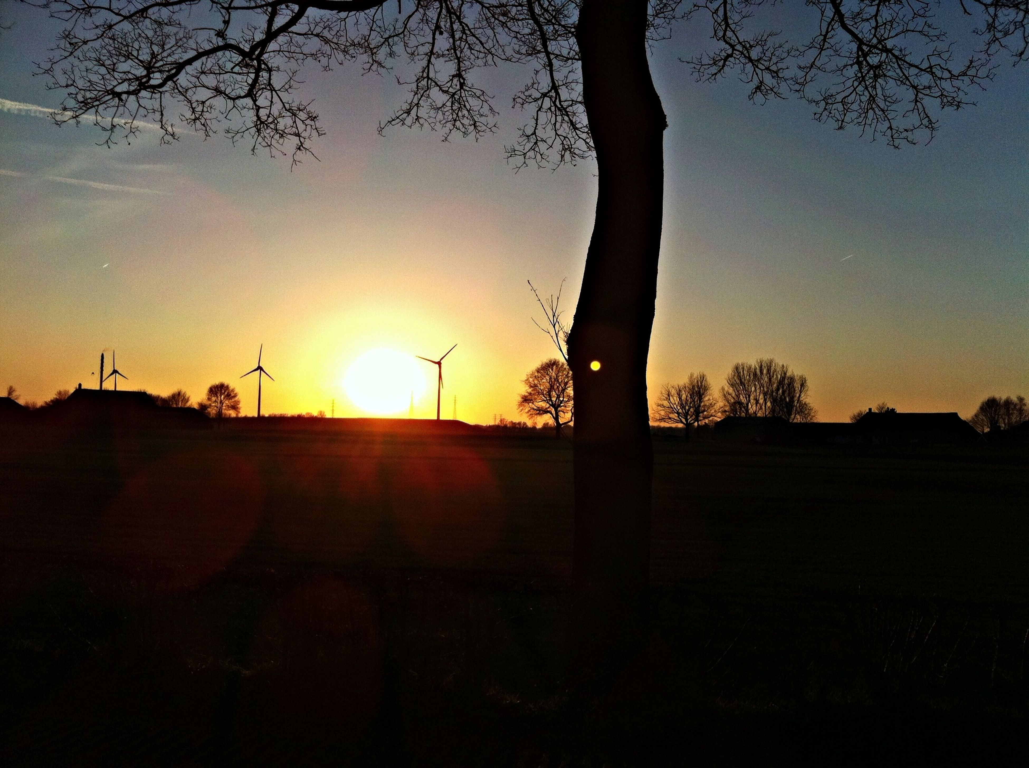 silhouette, sunset, tree, sun, bare tree, tranquility, clear sky, tranquil scene, sunlight, nature, scenics, landscape, dark, beauty in nature, branch, orange color, sky, lens flare, sunbeam, copy space