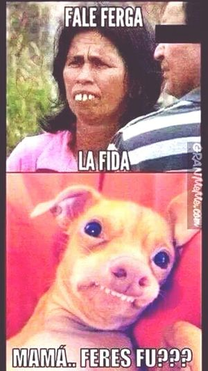 Lol 😂 Lloroderisa