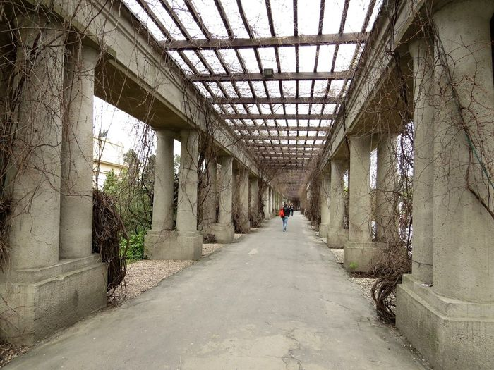 Architectural Column Architecture Built Structure Colonnade Diminishing Perspective Open Roof The Way Forward Walkway
