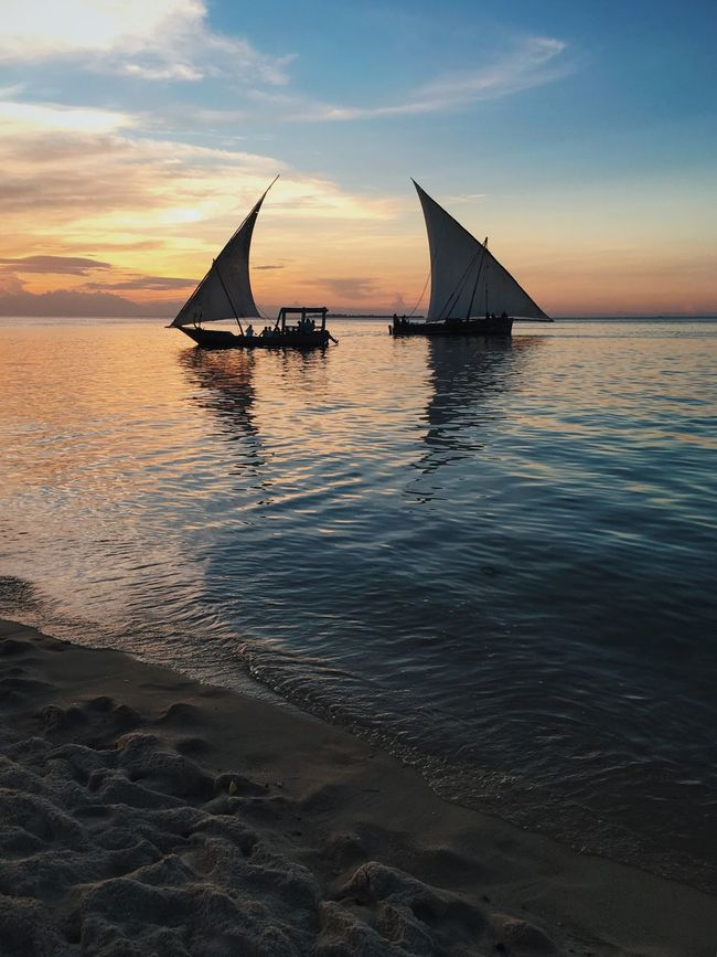43 Golden Moments Dhows Dhow Boat Ocean Beach