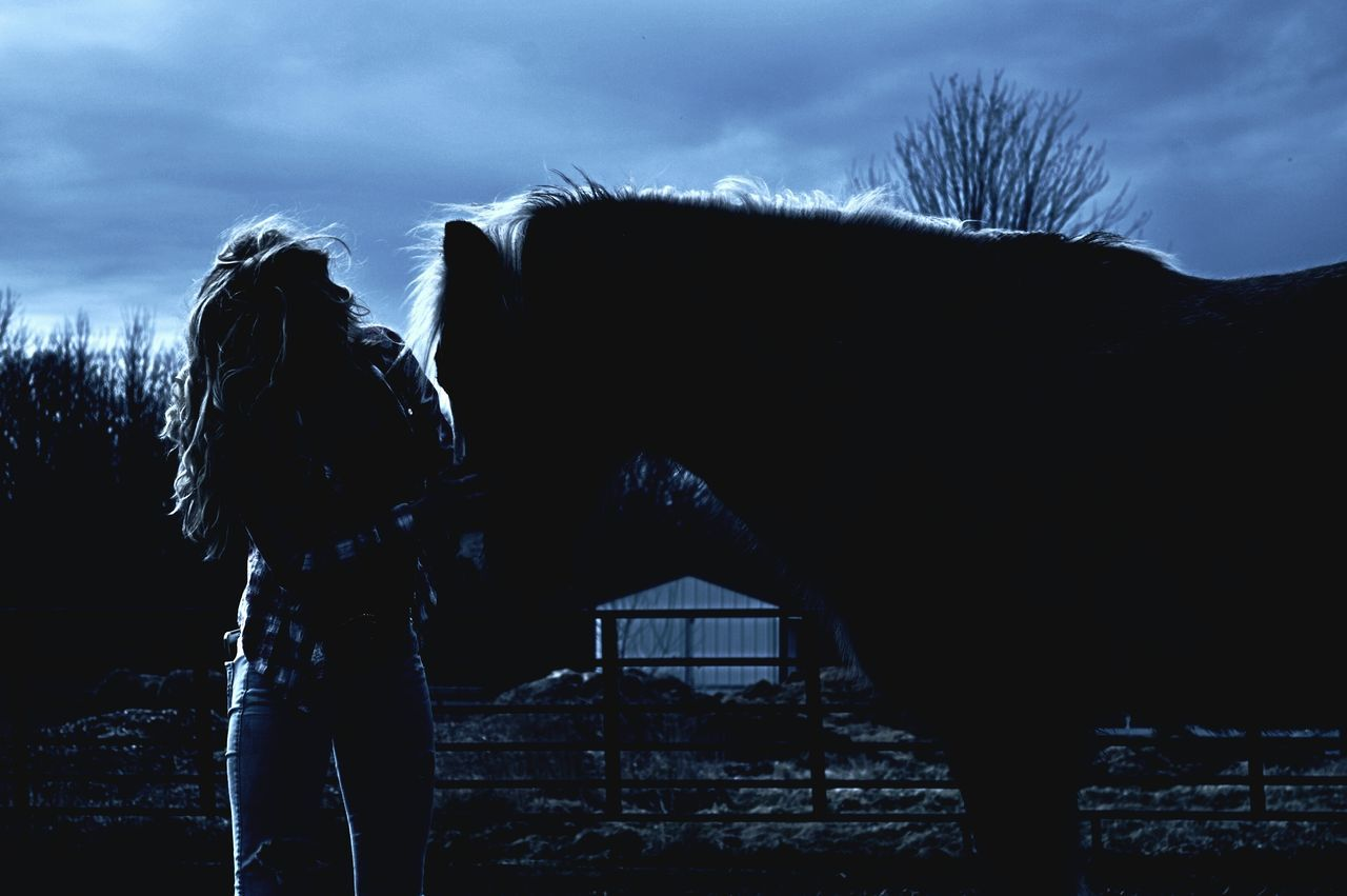 Enjoying Company in the moonlight 🌙 Moonlight Moon Light Horse Silhouette Horse Photography  Girl And Horse Night Photography Night Shot Silhouette Cowgirl Countryside Nighttime Horses EyeEm Best Shots Eyeem Best Ed Eyeem Horse Eyeem Market Cowgirl Silhouette Farm Farm Animals Pony EyeEm Night Shots Eyeem Night Showcase April