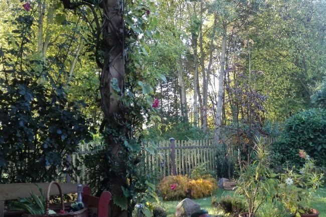 Herbst Outdoors Autumn