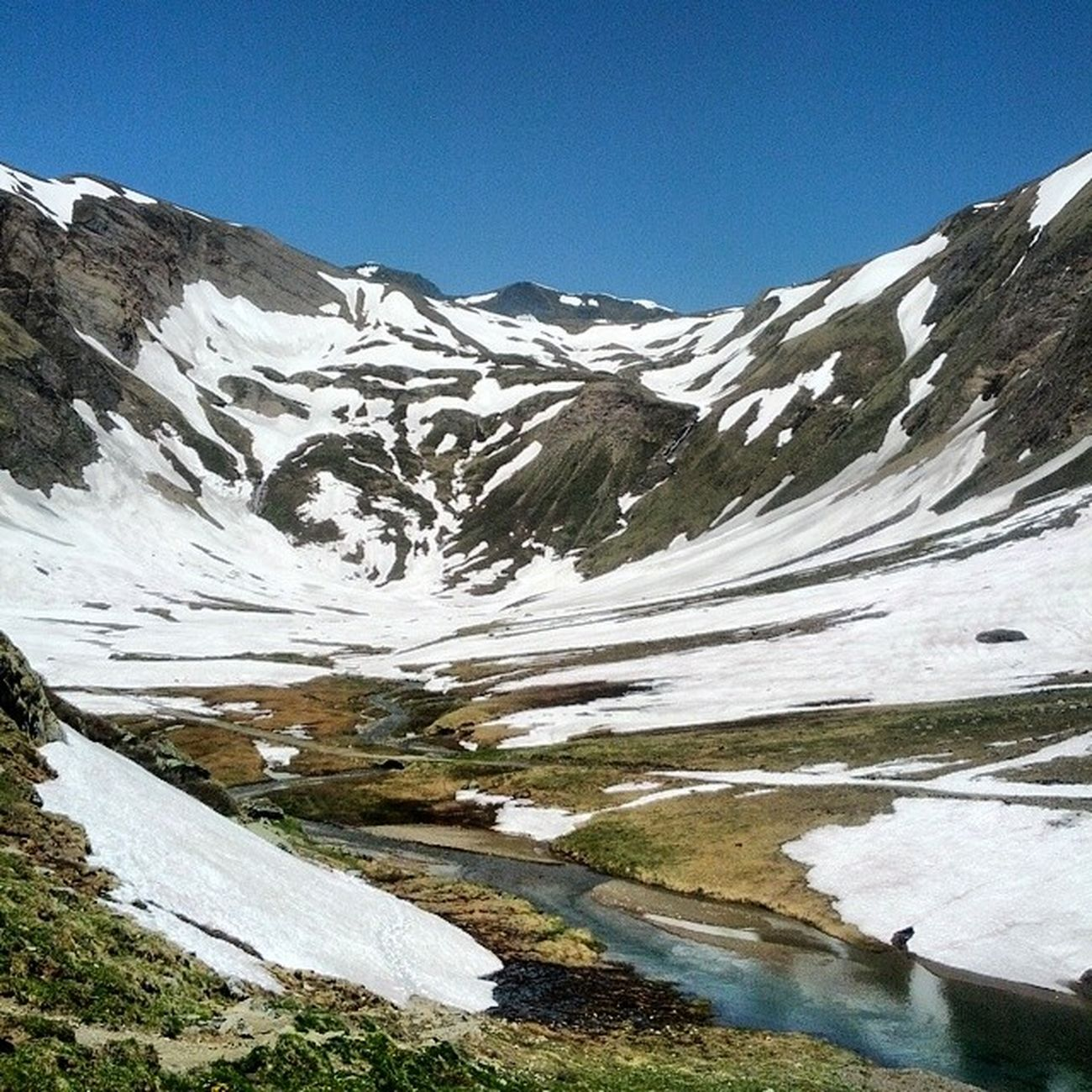 Bettelmat Griesspass Alp Valformazza