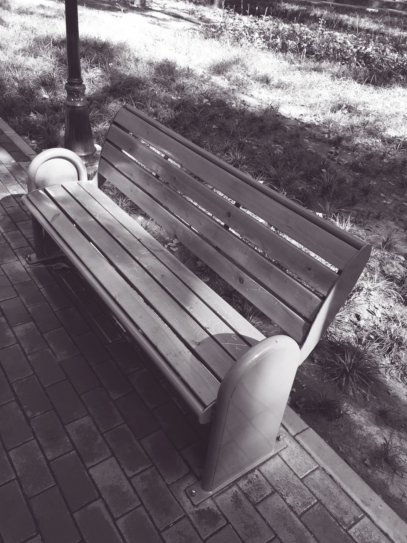 孤独的座椅