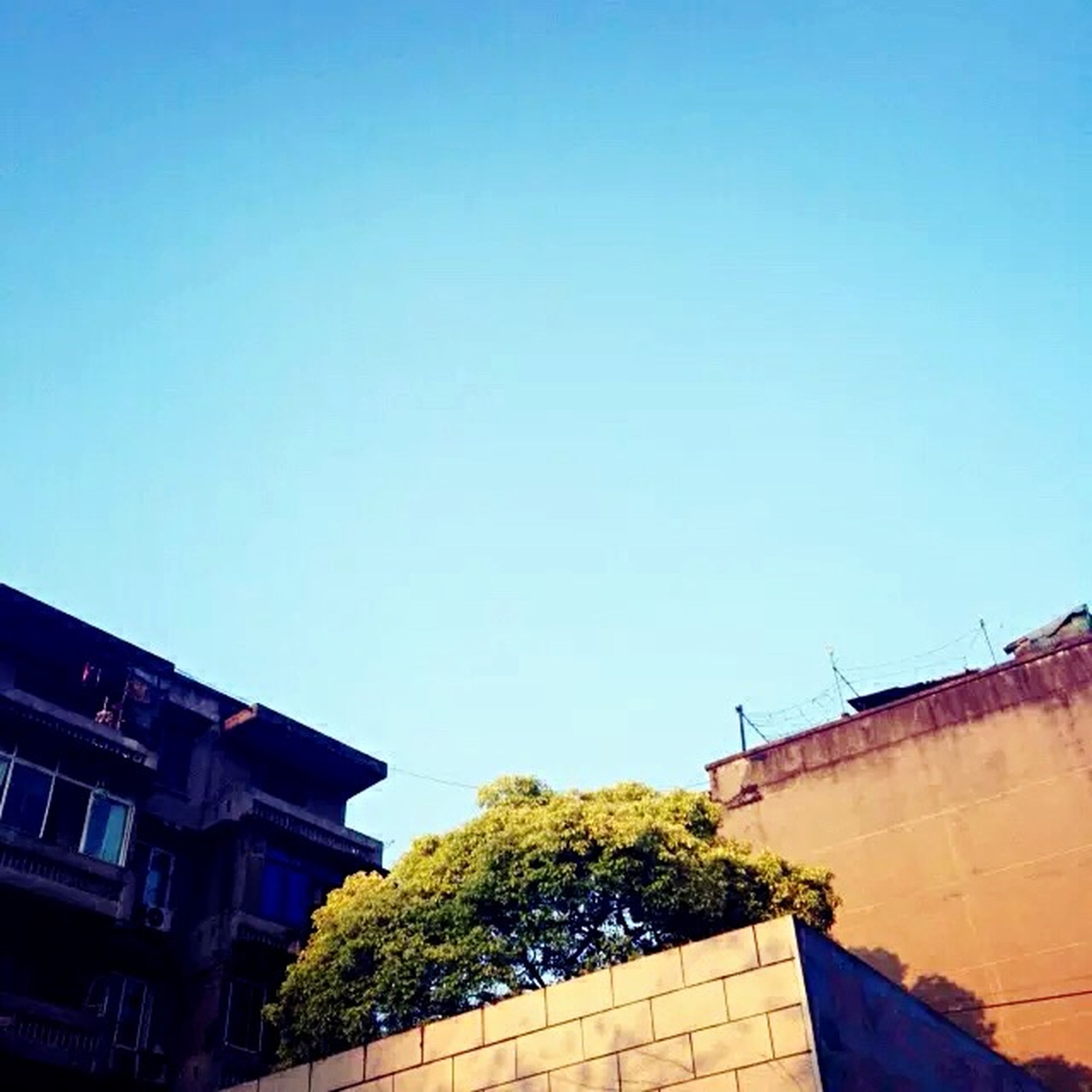 architecture, building exterior, built structure, clear sky, low angle view, copy space, residential structure, residential building, building, blue, house, city, roof, high section, outdoors, window, day, no people, residential district, exterior