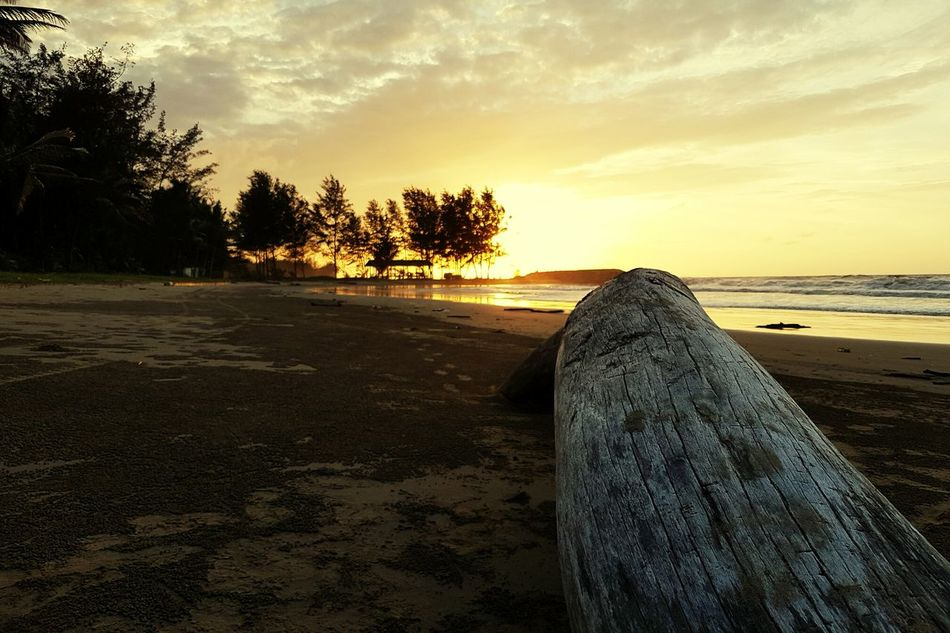 Sunset Nature Tree Sky Cloud - Sky Beauty In Nature Outdoors No People Water Day Sunlight Beach Landscape Horizon Over Water Extreme Weather Beauty In Nature Sea Tree Nature Scenics Fallen Tree Tree Trunk