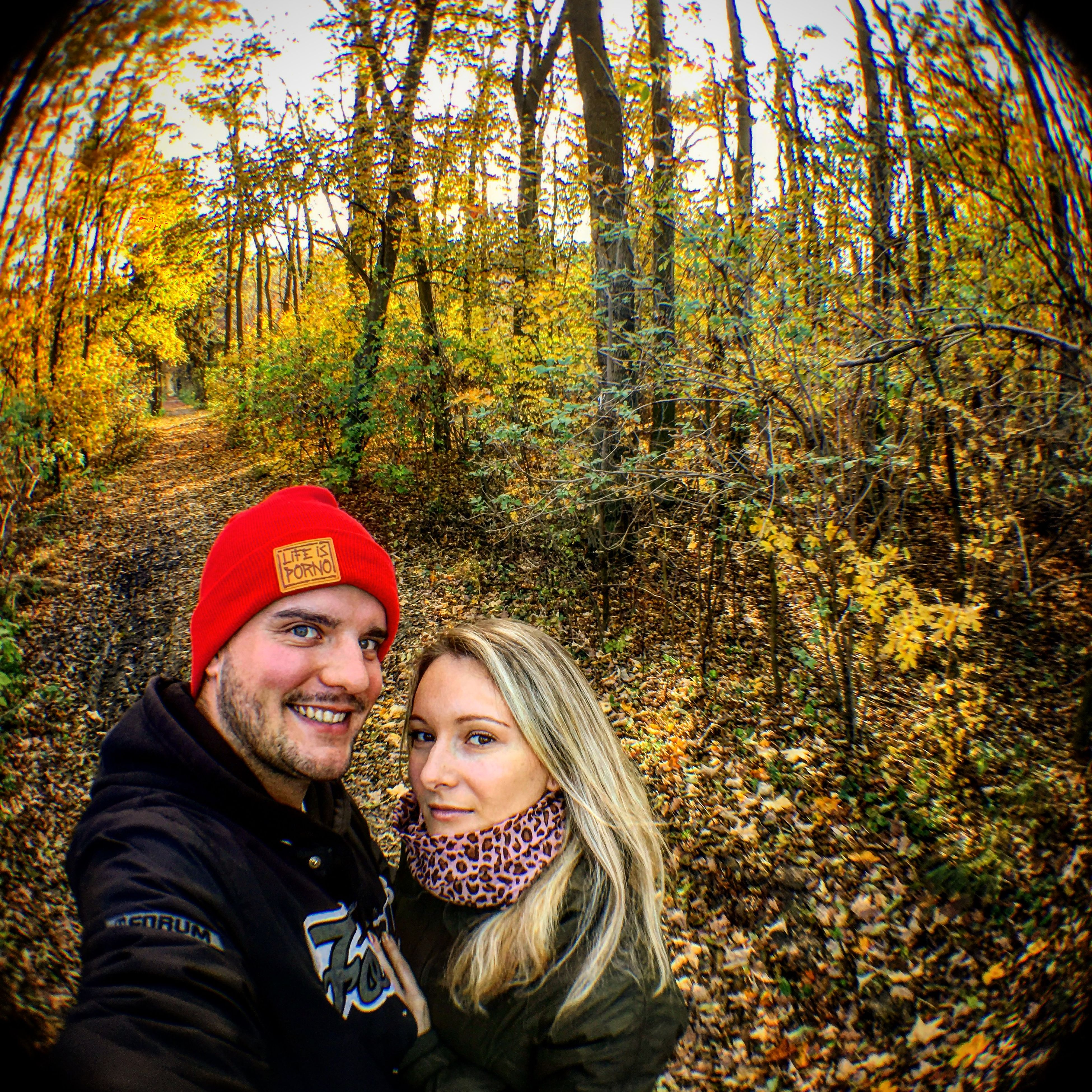 IPS2015Fall Fall Autumn Walking Around Forest Love Photowithiphone6s Fisheye FishEyeEm Lifeisporno Forumsnowboards  Showcase: November Learn & Shoot: Simplicity