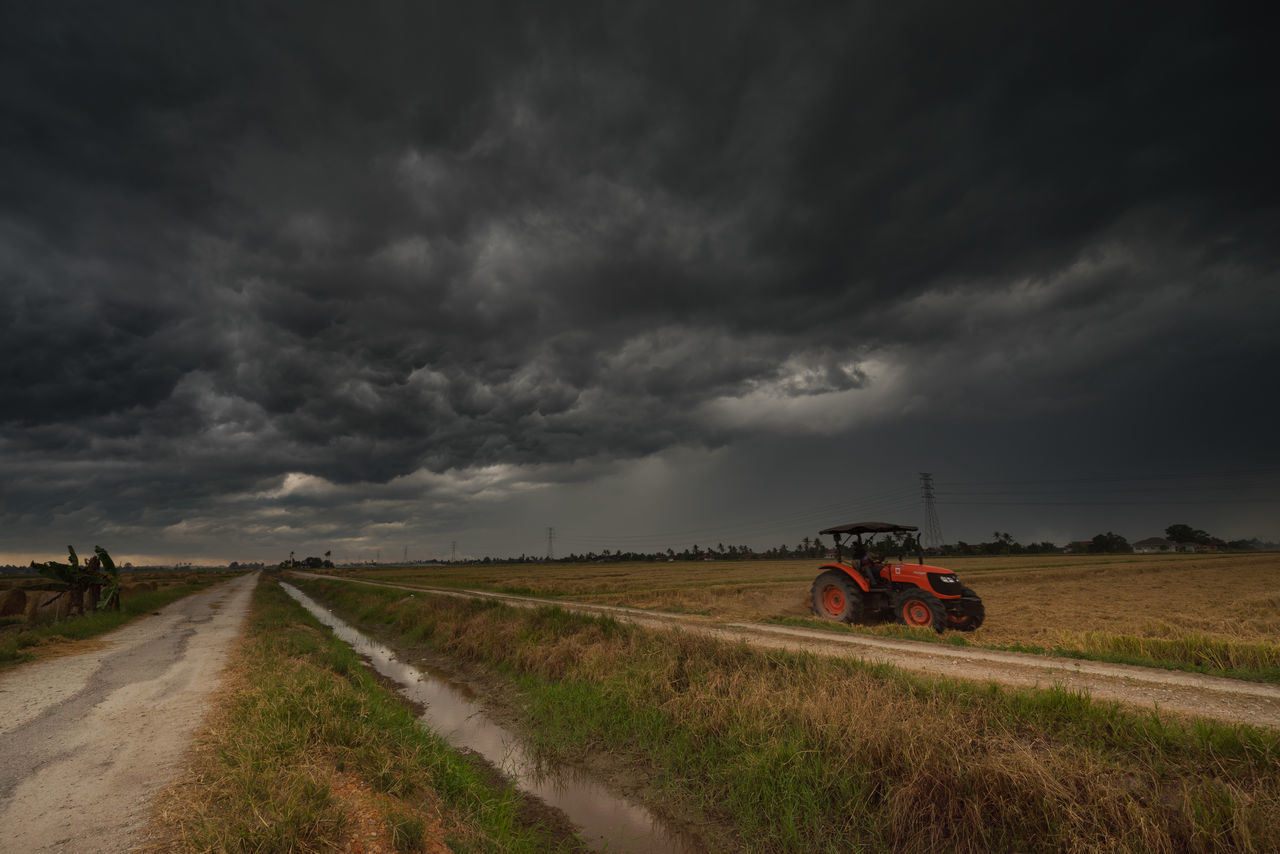 A cloudy scenery with rolls of haystack in paddy fields Agriculture Cloud - Sky Cloudscape Cloudy Day Dirt Road Dramatic Sky Field Grass Land Vehicle Landscape Mode Of Transport Nature Non-urban Scene Overcast Road Rural Scene Scenics Sky Stationary Storm Cloud The Way Forward Tranquil Scene Tranquility Transportation