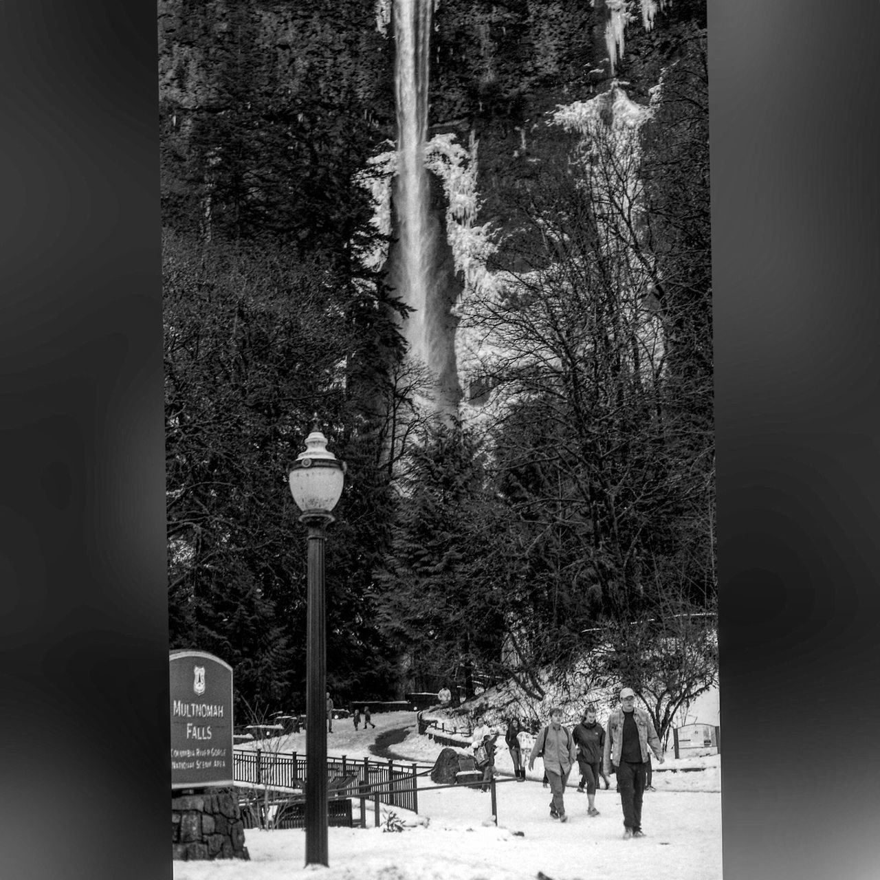 Nature Cold Temperature Waterfall CanonA1 Blackandwhite Photography Multnomah Falls