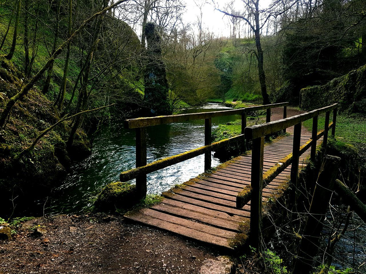 Riverbank Beauty In Nature Railing Bridge - Man Made Structure Nature Tranquility S7 Edge S7 Edge Photography