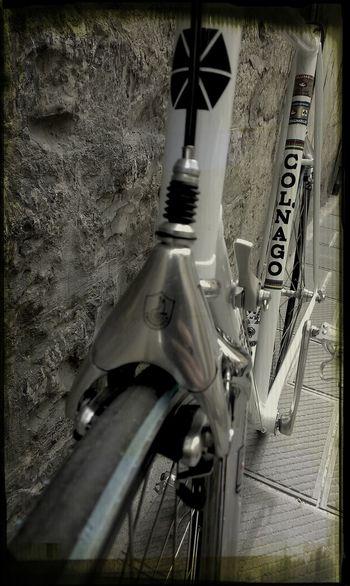 Colnago Scic Beppe Saronni!! Bike
