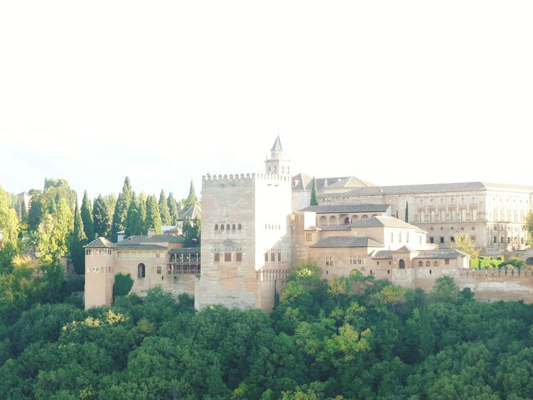Architecture Travel Destinations Tree Building Exterior No People Business Finance And Industry Cityscape Outdoors Sky City Urban Skyline Medieval Day Alhambra