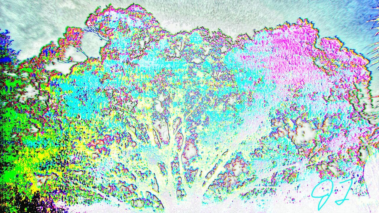"""Color Tree 3"" The Innovator The Innovator Electronic Art Computer Art ManyColors Colorful Color Colors Multicolored Multi Colored Effect Art Photography Artphotography Magic"