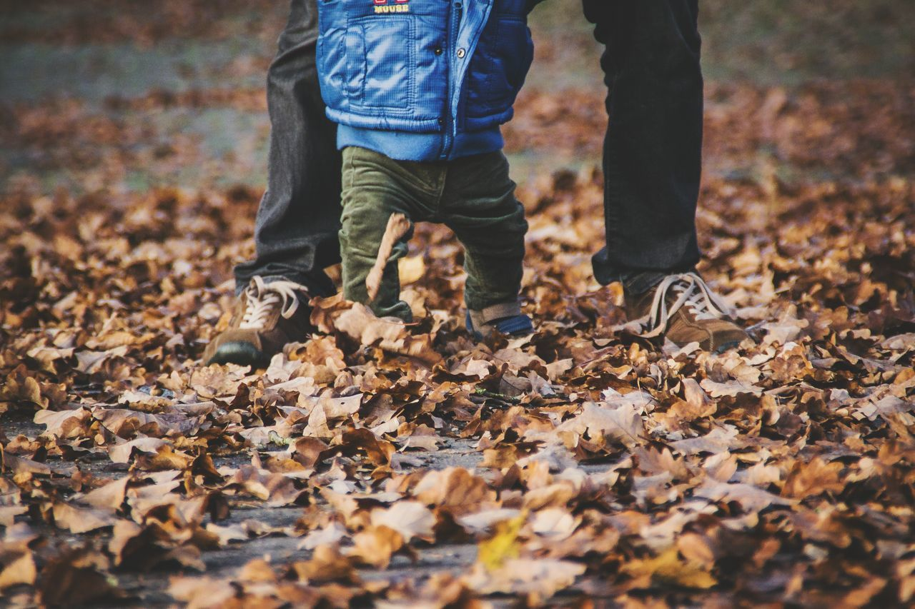 """A truly rich man is one whose children runs into his arms when his hands are empty."" Family Love RePicture Masculinity Father & Son Autumn Autumn Leaves Children Photography"