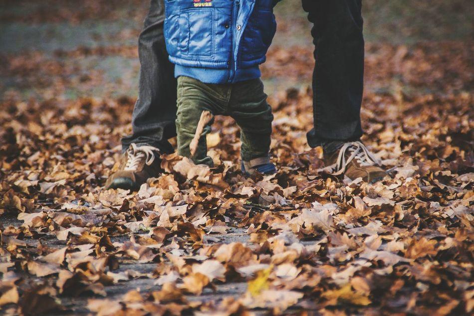 Beautiful stock photos of father, Abundance, Autumn, Boys, Change