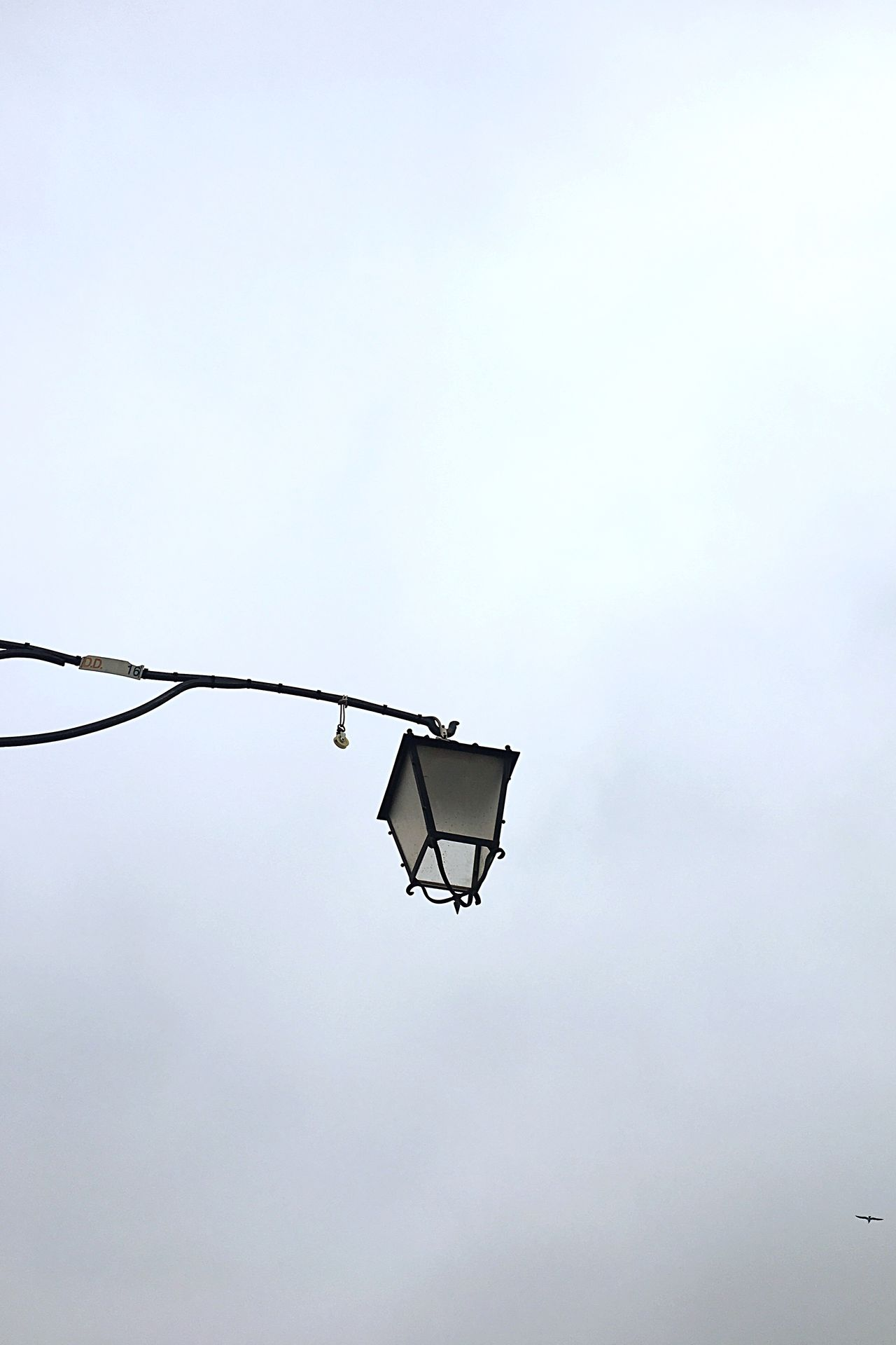 Low Angle View No People Hanging Outdoors Sky Day Nature Lamp Street Streetphotography Light Up Your Life