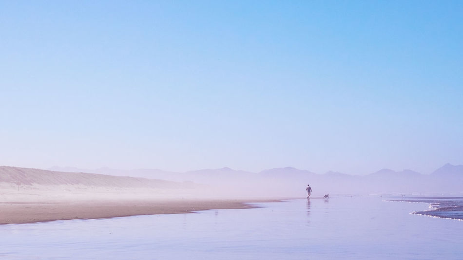 Beautiful stock photos of reisen, Beach, Beauty In Nature, Clear Sky, Copy Space