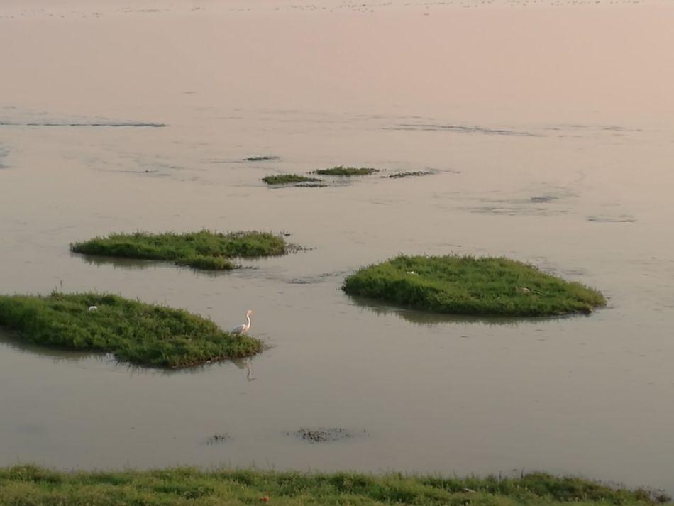 WhitSande Nile by Khartoum Sudan