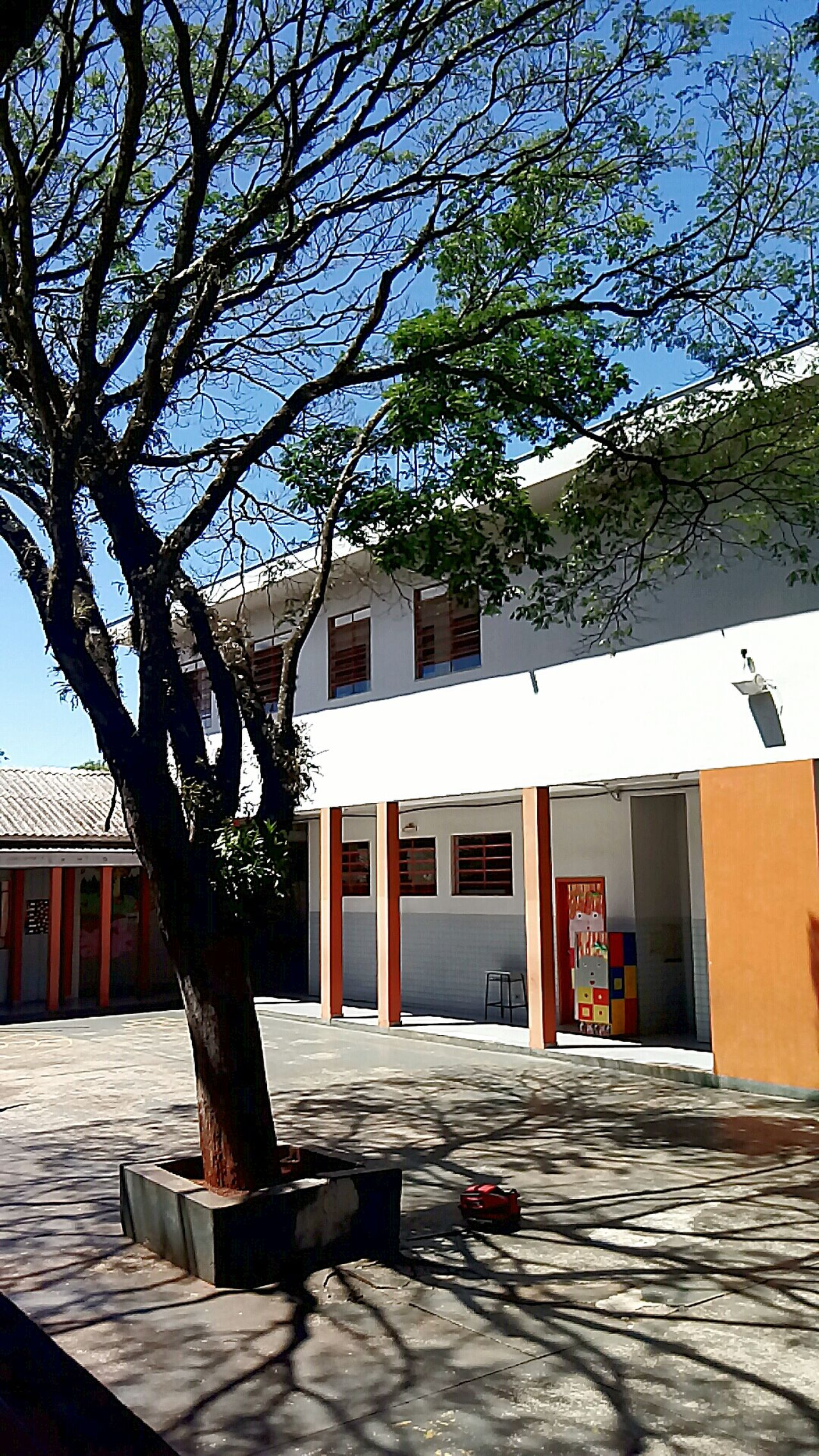 My school. When I Was a Kid !!!!😉😉