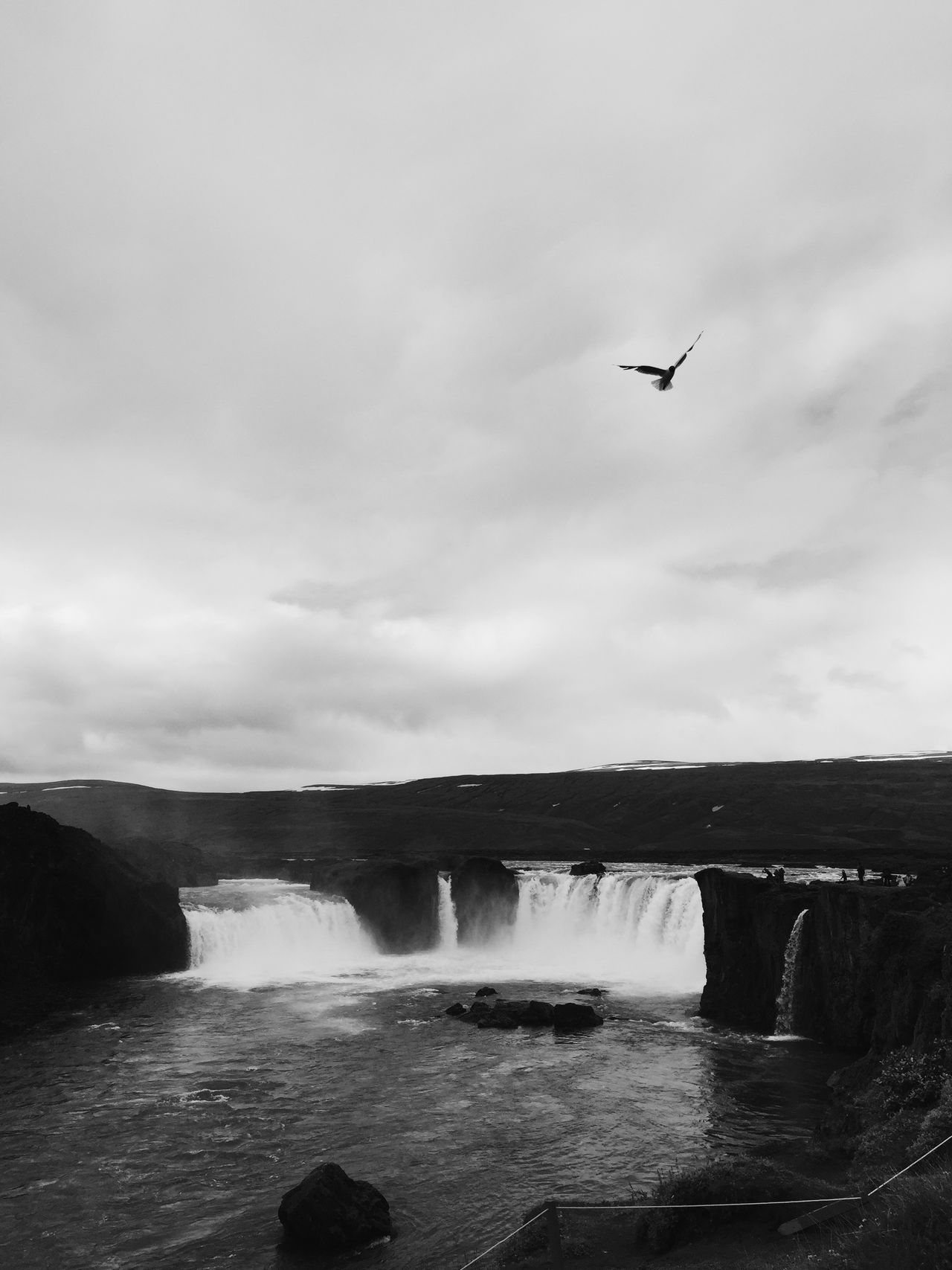 Shades Of Grey Bird Sequal Waterfall Iceland Edge Of The World
