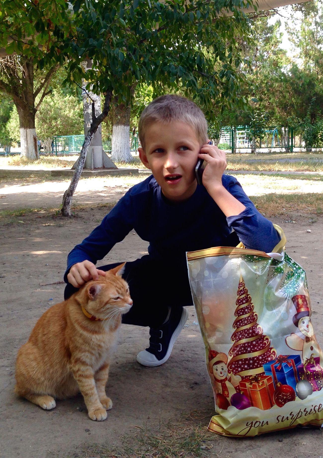 Homeless Cats Cats Cat Cat♡ Children Children Photography