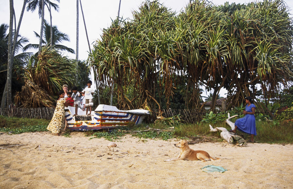 a family relaxes on a Sri Lankan beach Beach Beauty In Nature Beruwela Boat Dog Landscape Leisure Activity Lifestyles Outdoors Relaxation Sri Lanka Tourism Tranquil Scene Tranquility Vacations