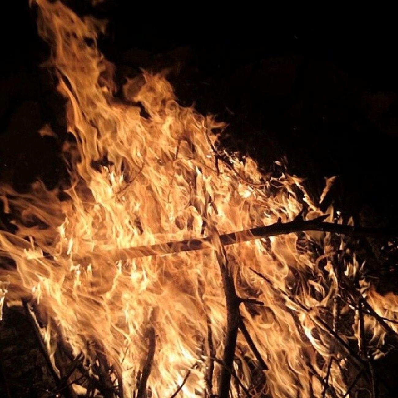 Geiler Abend Mit Euch lässig feuer angeschmissen bisschen viel gesüffelt bestoftheday