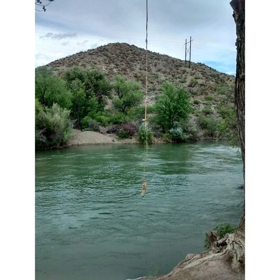 A rope swing shot by the river. A definite sign that summer is in the air in New Mexico. :) Ropeswing  River Water Summer Ameturephotography Summerdays  Naturephotos Naturewalk  Naturephotography CelestialSpiritPhotography