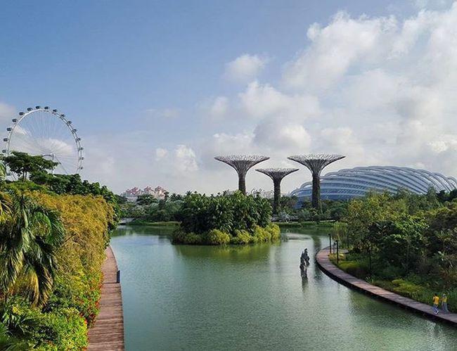 Gardens by the bay Singapore Gardensbythebay Somuchgreen Crewlife Mytinyatlas Instatravel