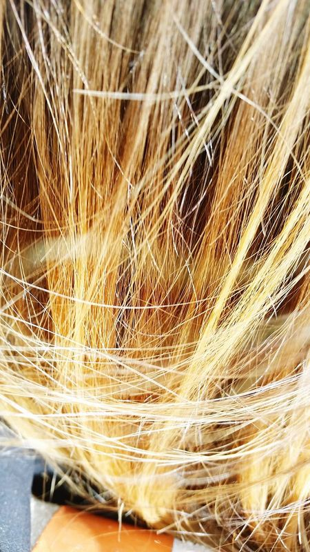 Hair Rubio