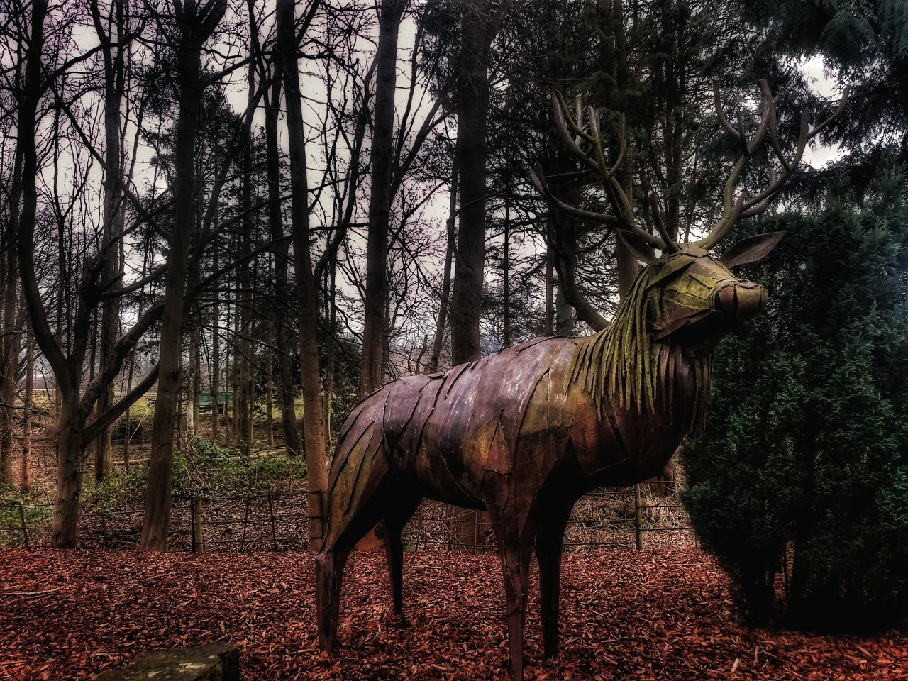 Animal Themes No People Outdoors Hdr_pics Iron - Metal Statue Welding Work Sculpture Mastery Hdr_Collection Man Made Object Stag Design Deer Hdrphotography Softness Soft Glow Soft Glow Through Trees Sony Experia Z3 Hdroftheday Built Structure Amazing