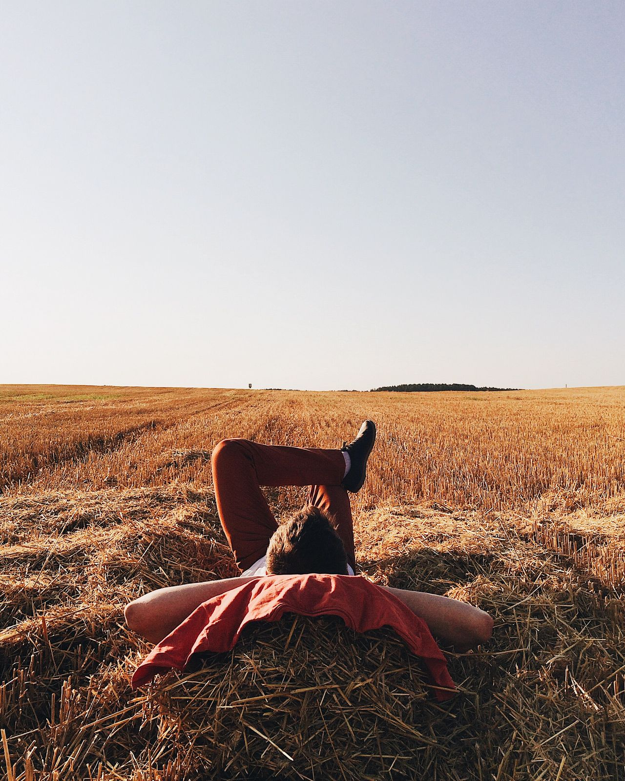 Sommergefühle Relaxing Field Clear Sky Copy Space Landscape Sunset Relaxing Moments Time