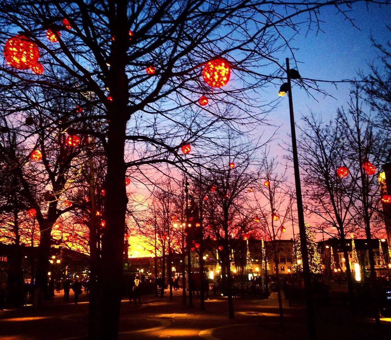 Sunset Gothenburg Sweden Christmas Lights Christmastime Christmas Decorations Christmas Around The World Tree Lights Colour Of Life Colors Beautiful My Year My View