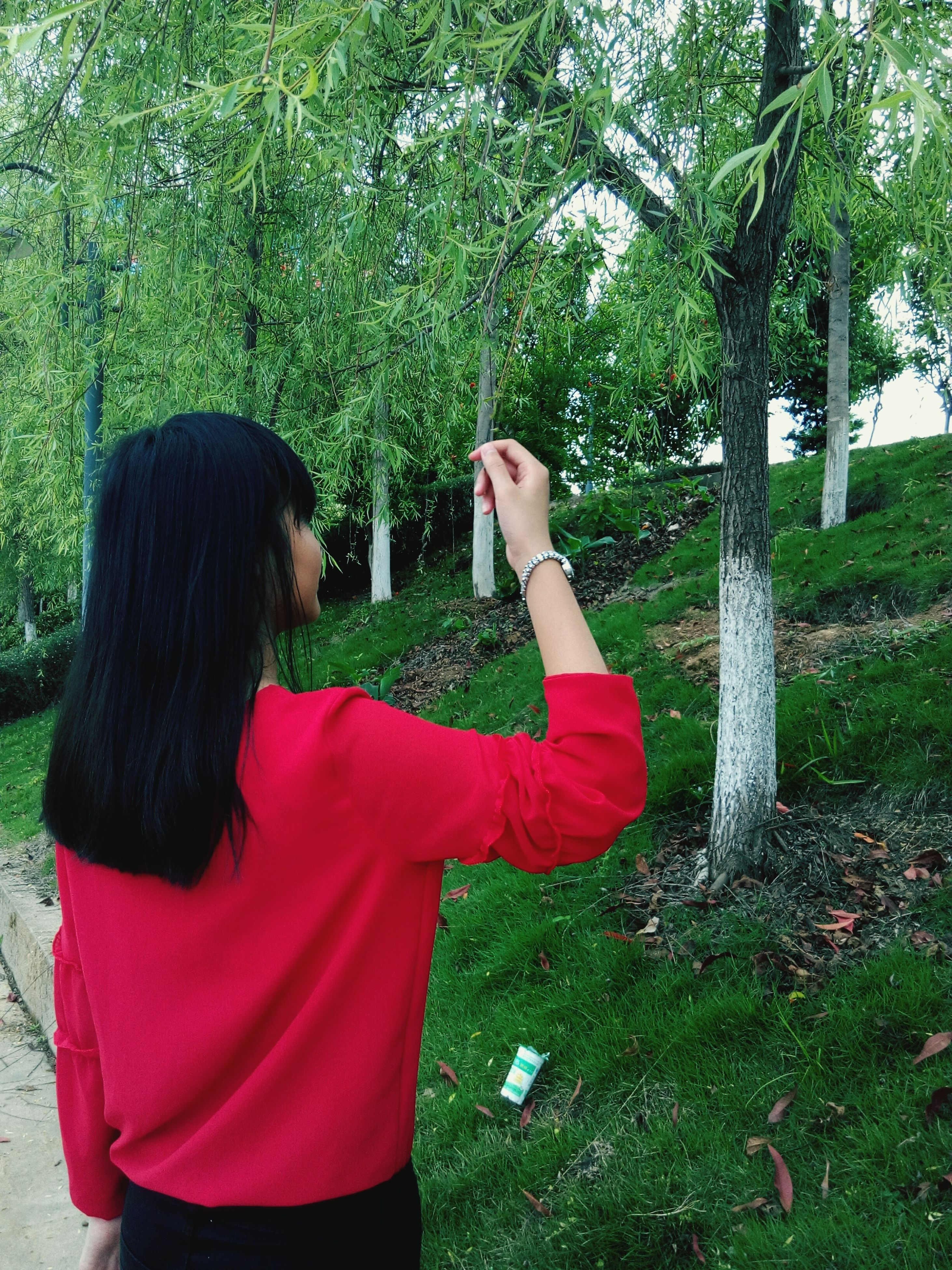 tree, lifestyles, leisure activity, casual clothing, rear view, person, young adult, long hair, young women, standing, three quarter length, park - man made space, sitting, waist up, growth, tree trunk, green color